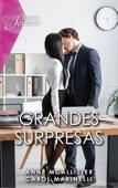 Grandes surpresas Book Cover