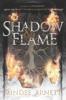 Mindee Arnett - Shadow & Flame bild