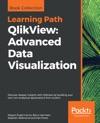 QlikView Advanced Data Visualization