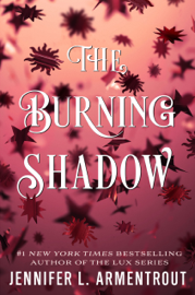 The Burning Shadow book