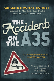 The Accident on the A35 PDF Download