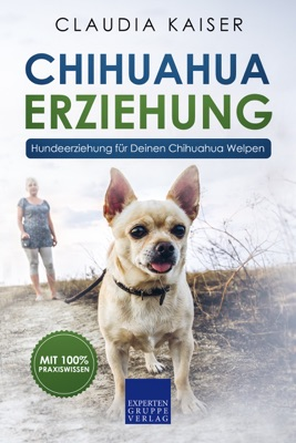 Chihuahua Erziehung