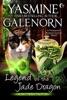 Legend of the Jade Dragon: A Paranormal Women's Fiction Novel