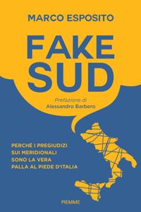 Fake Sud Libro Cover