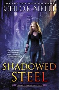 Shadowed Steel Book Cover