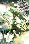 Is It Wrong To Try To Pick Up Girls In A Dungeon Vol 13 Light Novel