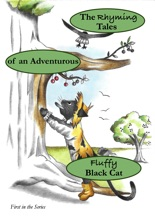 The Rhyming Tales of an Adventurous Fluffy Black Cat (Book 1)