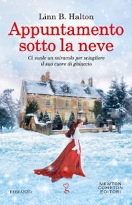 Appuntamento sotto la neve Book Cover