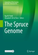 The Spruce Genome
