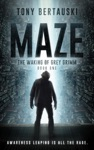 Maze The Waking Of Grey Grimm