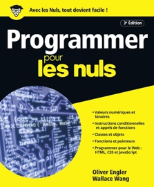 Programmer pour les Nuls grand format, 3e édition - Olivier Engler & Wallace Wang