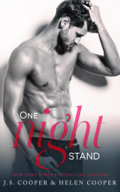One Night Stand book summary