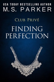 Finding Perfection PDF Download