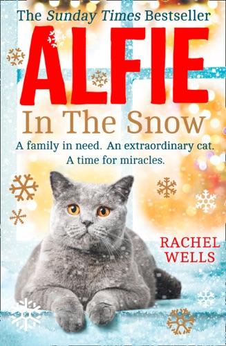 Rachel Wells - Alfie in the Snow