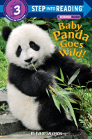 David Salomon - Baby Panda Goes Wild! artwork