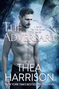 The Adversary Book Cover