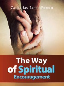 The Way Of Spiritual Encouragement Book Cover