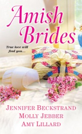 Amish Brides PDF Download