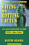 Saving My Rotting Cactus - An Illustrated Guide With Video Links