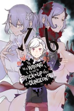 Is It Wrong To Try To Pick Up Girls In A Dungeon?, Vol. 16 (light Novel)