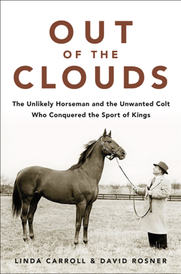 Out of the Clouds - Linda Carroll & David Rosner book