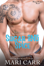 Sugar and Spice - Mari Carr book summary