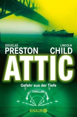 Attic pdf Download