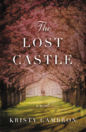 The Lost Castle book