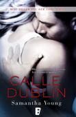 Calle Dublín Book Cover