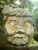 Arqueologia Maya