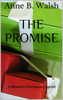 Anne B. Walsh - The Promise artwork