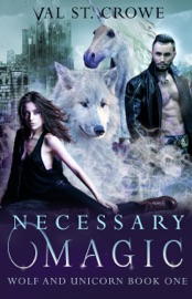 Necessary Magic PDF Download