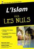L'Islam pour les Nuls, édition poche