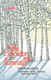 Bible Expositor and Illuminator book