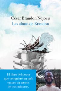 Las almas de Brandon Summary