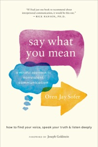 Say What You Mean Book Cover