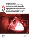 Les Capacits De Production Dacier Dans Les Conomies Non Membres De LOCDE 2010