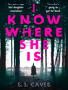 S. B. Caves - I Know Where She Is artwork