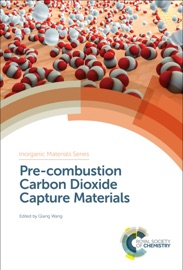 Pre Combustion Carbon Dioxide Capture Materials