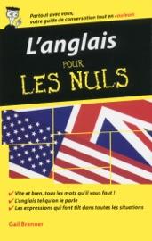 LANGLAIS - GUIDE DE CONVERSATION POUR LES NULS, 2èME éDITION