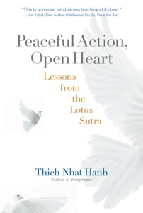 Peaceful Action, Open Heart Book Cover