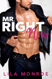 Mr Right Now PDF Download