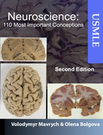 Neuroscience: 110 Most Important Conceptions