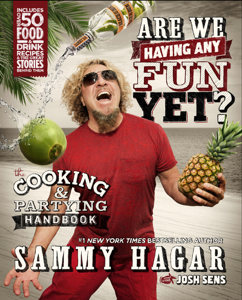 Are We Having Any Fun Yet? Book Cover