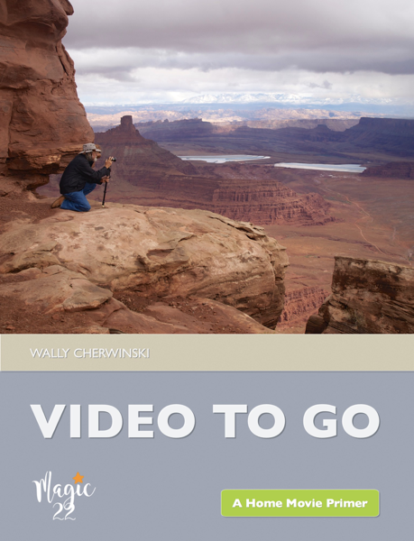 Download Video To Go PDF Full