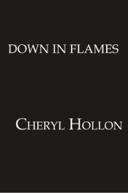Down in Flames book