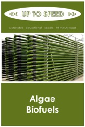 Download and Read Online Algae Biofuels