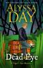Alyssa Day - DEAD EYE kunstwerk