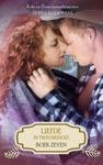 Liefde In Twin Bridges Boek Zeven