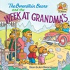 The Berenstain Bears And The Week At Grandmas